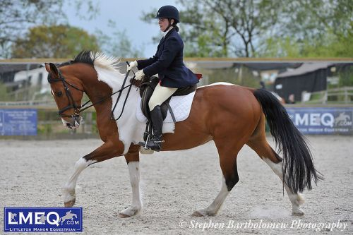 lmeq-littleton-dressage