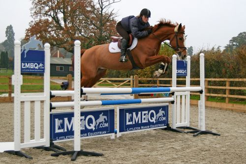 lmeq-showjumping-arena-competitions 4